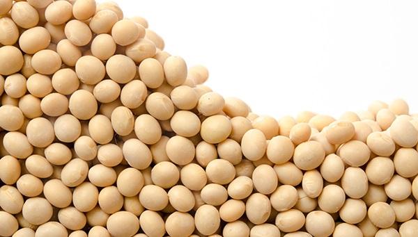 Strawność białka w śrutach poekstrakcyjnych